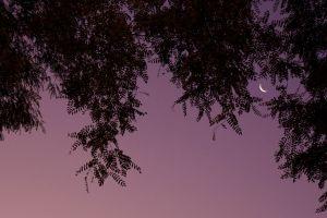 La-Luna.jpg
